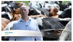 this-is-dairy-farming