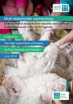 hlpe-report-13-multi-stakeholder-partnerships-to-finance-and