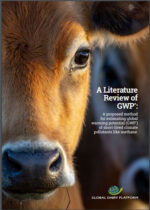 A-Literature-review-of-GWP-star-Nov-2020