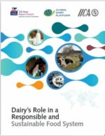 Dairys role in a responsible and sustainable food system report cover